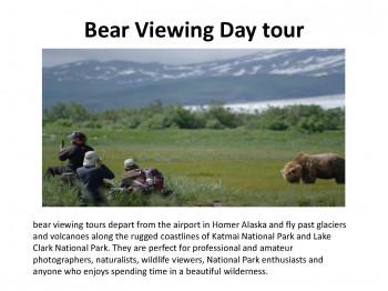 Bear Viewing Day tour